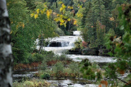 The Lower Falls of Tahqhamenon Falls State Park near Paradise, Michigan, in the Upper Peninsula flow through late fall woods just beginning to show autumn color.