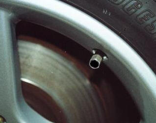 Valve Stem with Cap On