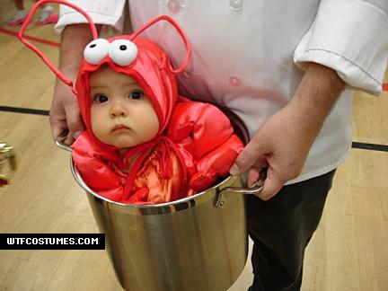 Lobster Baby in a Bucket