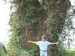 Russ finds a live oak to his liking!