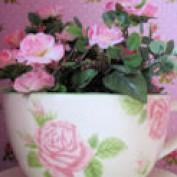 Romantic Crafts profile image