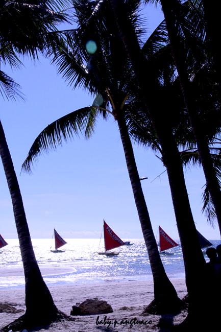 Paraws (sailboats) with light at noon