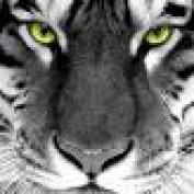 Darren2010 profile image