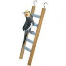 Simple bird ladder