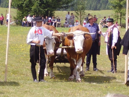 Traditional Slovakian farmers who owned their own land, how they looked like before the collectivization and socialization of the communist years began.