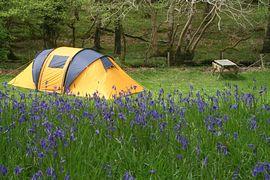 Dynas Campsite Gwynedd