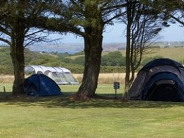 Redlands Caravan and Camping Park