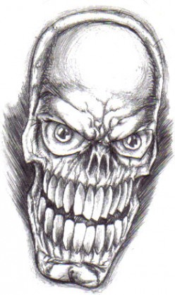 The skull before drawn with a biro pen.Copyright Wayne Tully 2009