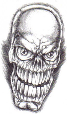 The skull before drawn with a biro pen.Copyright Wayne Tully 2009