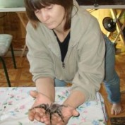spiderspun profile image