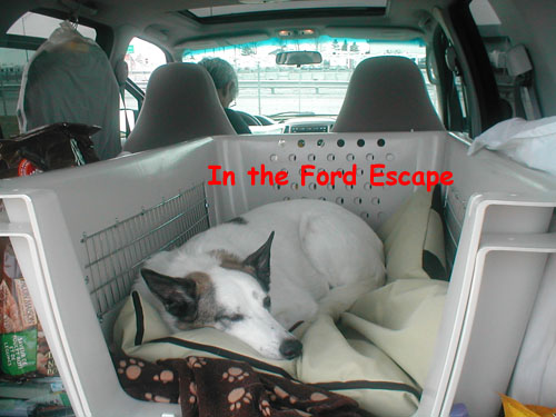 We have now taken 2 trips across 5 provinces, thousands of miles in great comfort, kennel and all