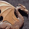 Wood Dragon profile image
