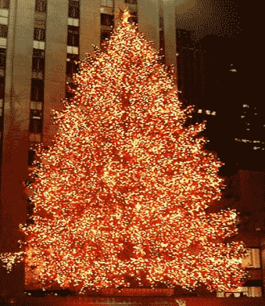 New York Tree