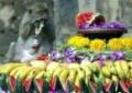 Lopburi Monkey Festival in Thailand