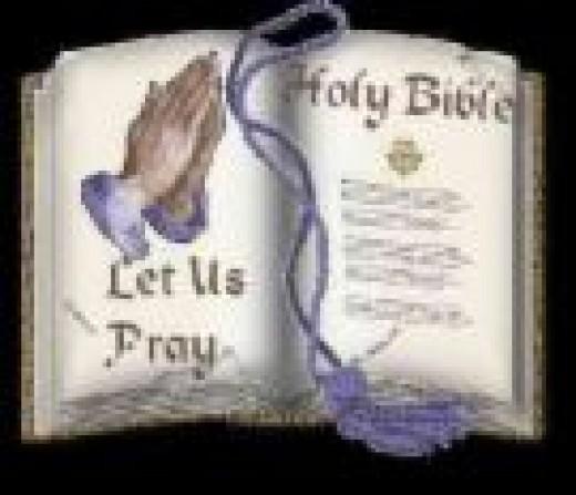 Holy Bible (wtv-zone.com)