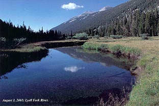 08/04/01: The Lyle Fork River flowing through Lyle Canyon.