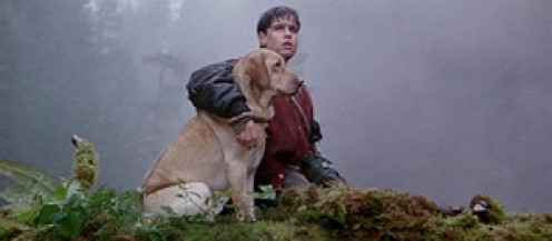 "Angus and Yellow trying to survive. Scene from ""Far From Home (The Adventures of Yellow Dog)"""