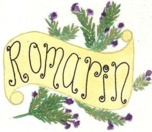 Versatile, distinctive; Rosemary