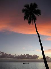 Fiji by sworm on flickr