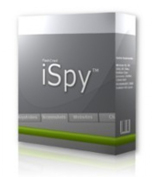 Spy Key Logger for PC Monitor screen capture spector, picture courtesy of ebay seller http://myworld.ebay.com/flashcrest/