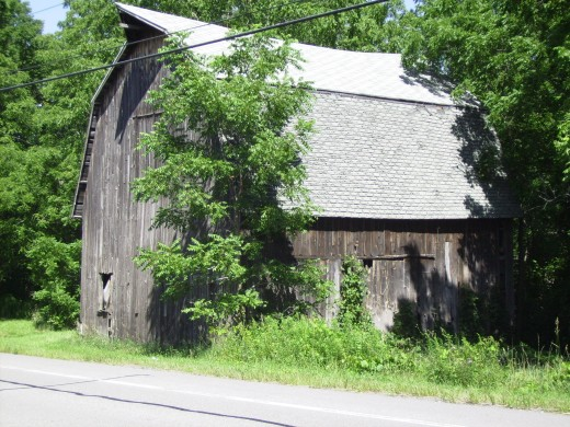 This quaint old barn is the only building we found in South Bristol, New York.  Like, I said, it is a newer town than Cheshire and really hasn't started to develop.