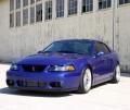 The Cobra Mustang - SVT