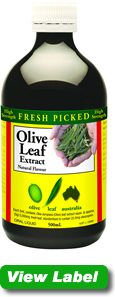 Olive Leaf with loads of benefits