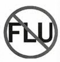Natural Secrets For All Flu Prevention