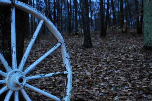 The white wagon wheel, showing its age, contrasts with the leaves-covered front yard. Gusty fall winds and blowing rain knocked most of the rest of the leaves off trees today. It's getting down to oaks and beeches -- and they'll hang on to some of th