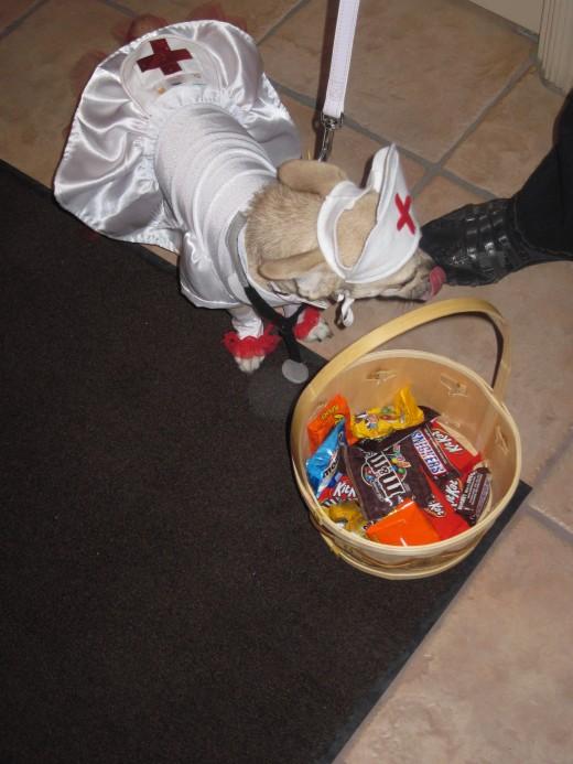 Halloween has its Rewards