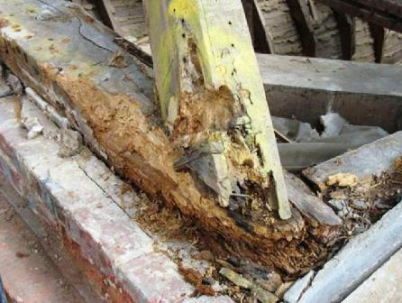 The thing about dry rot is that you rarely find it until extensive damage has been done, likewise with sin in our lives