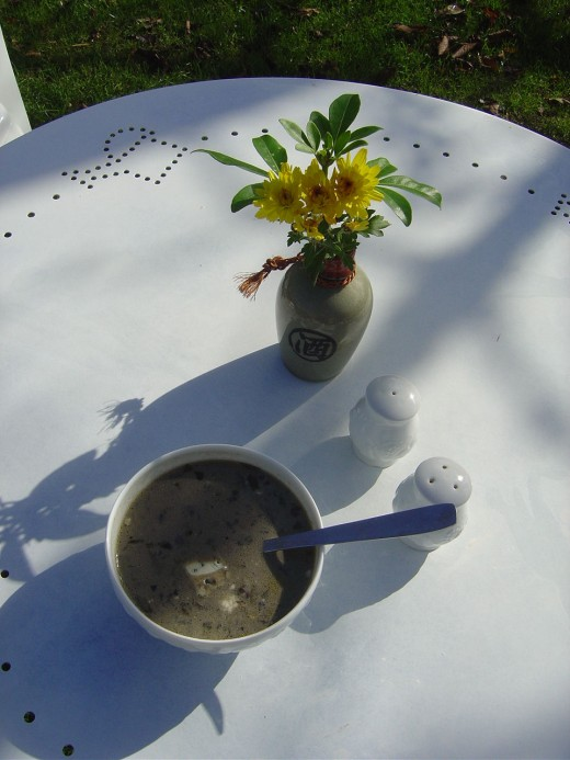 Served in white Limousin Porcelain bowls this makes a wonderful Halloween or autumn soup