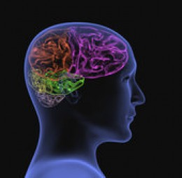 Sense thought potential  - is limited by the brain's capacity, ability and potential to communicate with the mind...