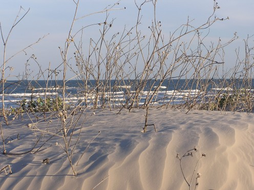 Dunes and waves.