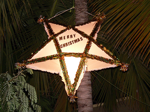 Christmas star on top of a Coconut tree