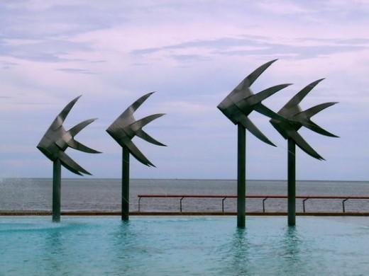 Pool Artwork at Cairns