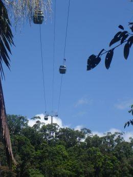 Skyrail  at Kuranda