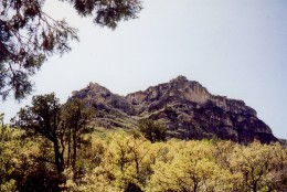Scenery on our hike into the Guadalupe Mountains...specifically McKittrick Canyon.