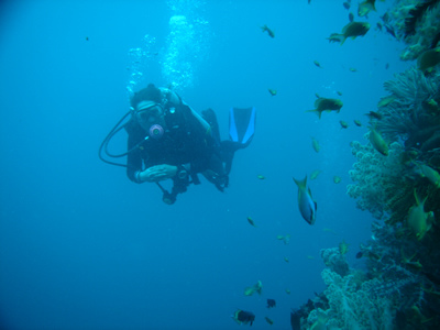 Moalboal Scuba Diving  source:http://bonitaoasis.com/about-moalboal/