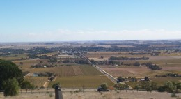 Tanunda in the Barossa Valley, viewed from Mengler's Hill. Vineyards in Autumn Source: Scott Davis - photographer / Wikipedia