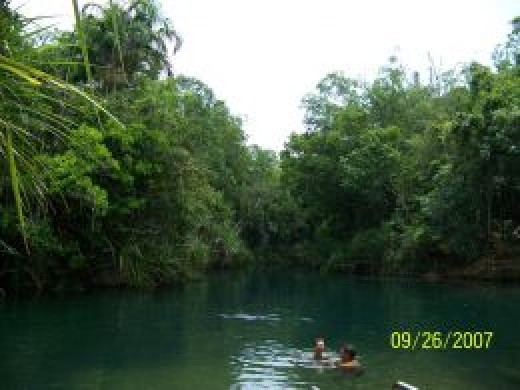 Cool down with a dip at Berry Springs