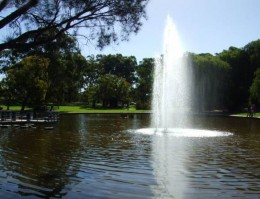 King's Park situated in Perth Australia