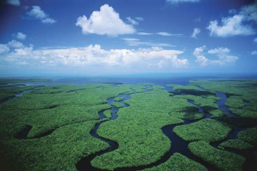 Everglades National Park waterways
