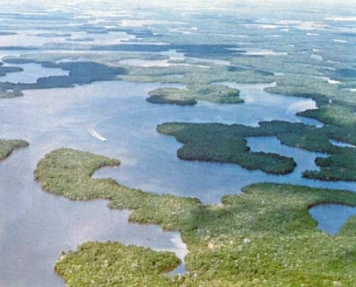 ten thousand islands