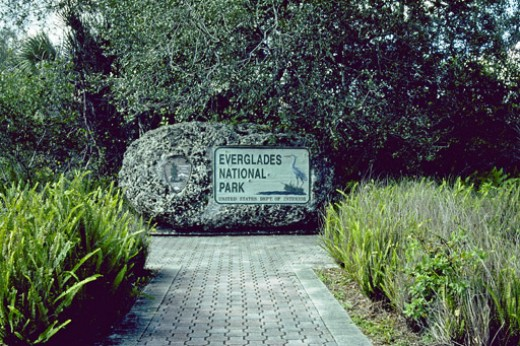 Welcome to Everglades National Park