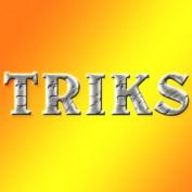 TRIKS profile image