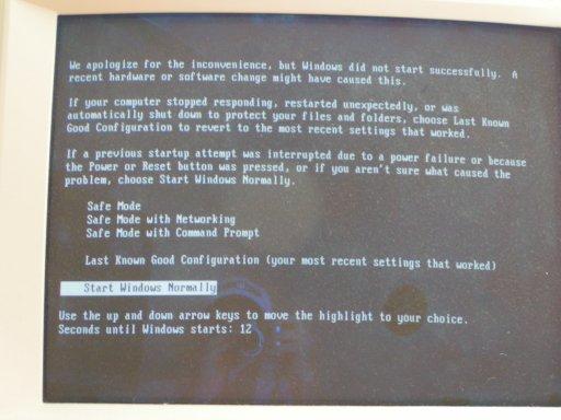 The Windows Boot Menu.