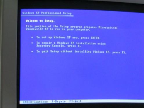The Windows XP Setup screen eventually loads.