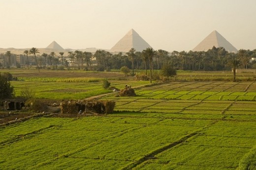 A view showing the pyramids across a field
