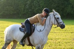 Essential Equestrian Horse Tack and Horse Riding Apparel